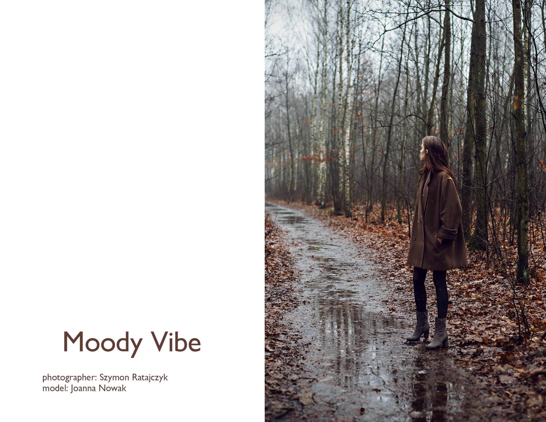 Moody_Vibe_by_Szymon_Ratajczyk_4